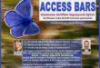 ACCESS BARS Uygulayıcılık Eğitimi – 7 Nisan 2018 – İZMİR